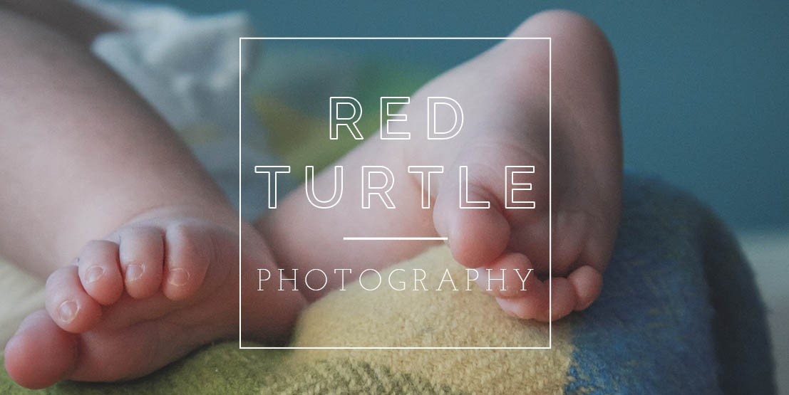 Red Turtle Photography