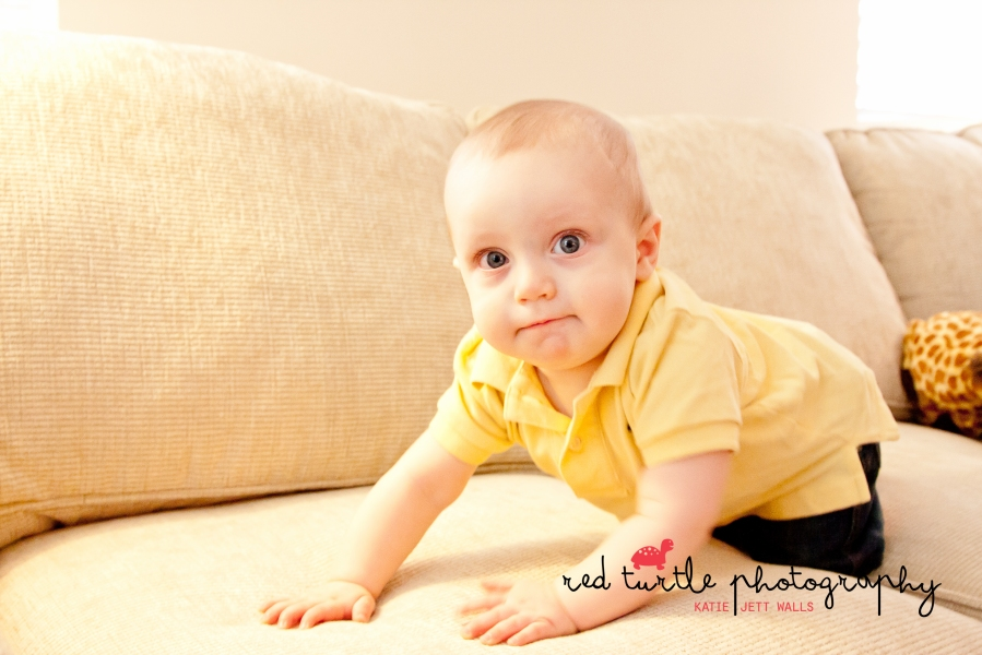 (c) 2014 Red Turtle Photography | Washington DC children's photography