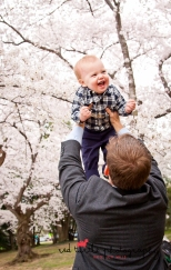 (c) Red Turtle Photography | Washington DC Cherry Blossom Family Photography