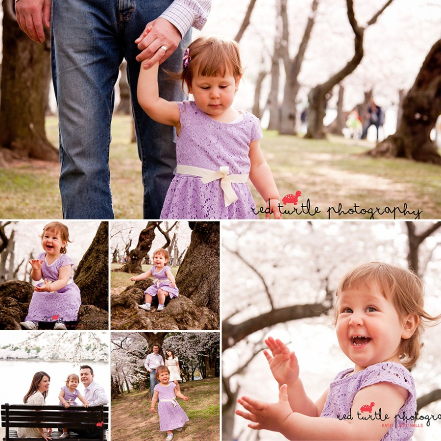 (c) 2014 Red Turtle Photography | Washington DC Cherry Blossom Family Photography
