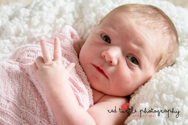 (c) Red Turtle Photography | Washington DC Newborn Photography